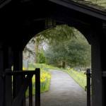 Overcome Feelings of Inadequacy : Ann Bibbey Blog