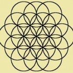 Flower of Life : Ann Bibbey Blog