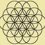 Flower of Life : Ann Bibbey Blog