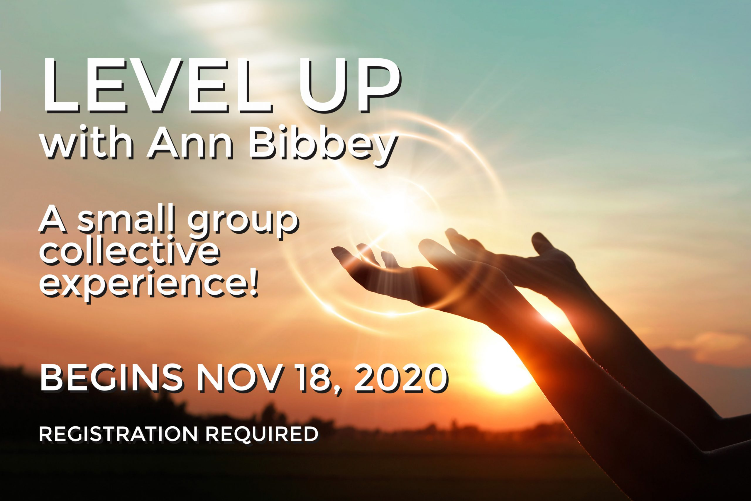 Level UP with Ann Bibbey